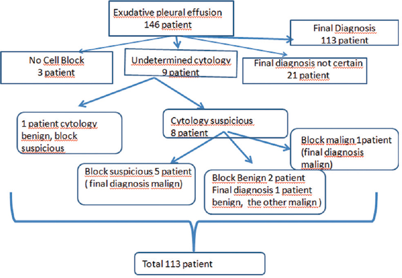Figure 3: Flow chart of patients who underwent thoracentesis